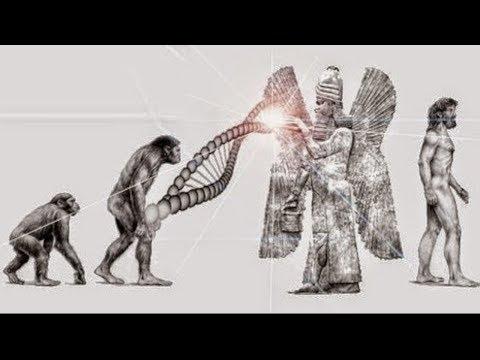 Die Anunnaki - Wahre Erschaffer der Menschheit? (Neue Evolutionstheorie)