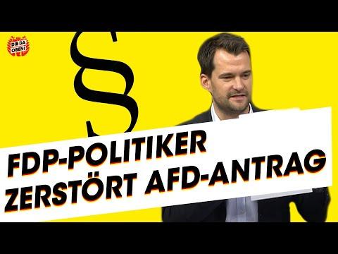 Kein Plan von Gerechtigkeit? FDP-Politiker nimmt AfD-Antrag auseinander