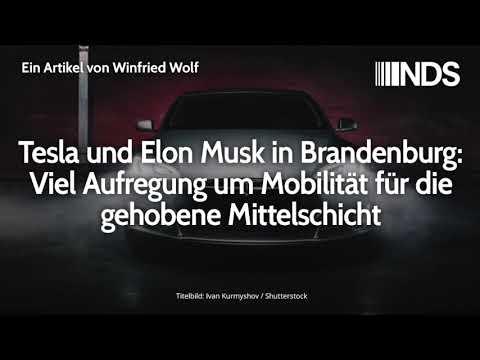 Tesla und Elon Musk in Brandenburg: Viel Aufregung um Mobilität für die gehobene Mittelschicht