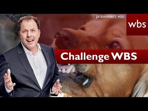 Mein Hund verletzt Einbrecher: Hafte ich dafür? | Challenge WBS Rechtsanwalt Christian Solmecke