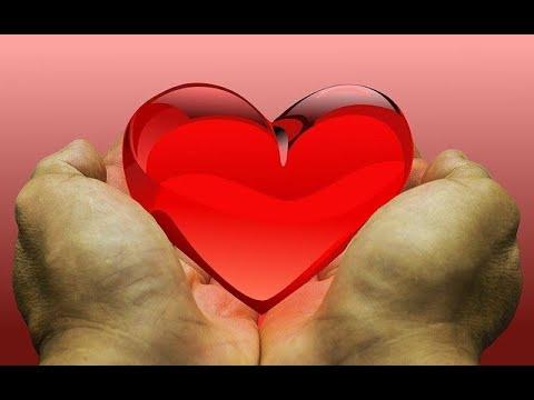 Liebe und Organspenden gehen durch den Magen