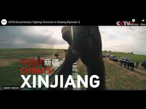 Chinas Politik in Xinjian - Umerziehungszentren als Strategie gegen Terrorismus