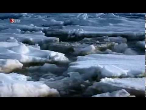 """""""Unser Wissen ist ein Tropfen. Wasser, das unbekannte Wesen"""", ORF, 3sat"""