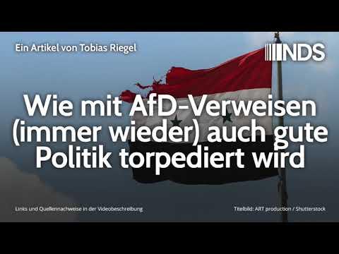 Wie mit AfD-Verweisen (immer wieder) auch gute Politik torpediert wird | Tobias Riegel | 19.11.2019