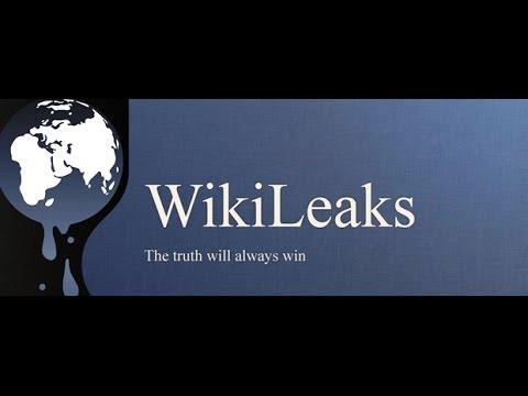 """Wikileaks Videobericht - """"Zuerst holten sie sich Assange"""""""