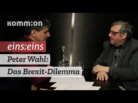 EINS:EINS Peter Wahl: Das Brexit-Dilemma.