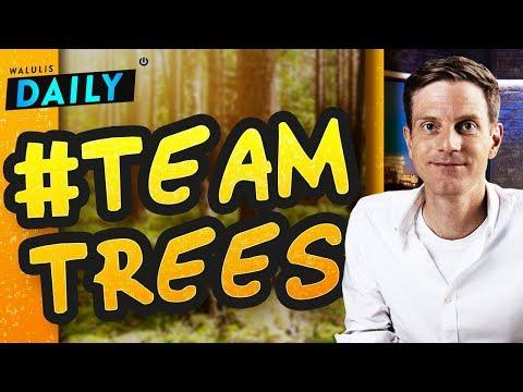 #teamtrees: Das steckt hinter der Aktion von MrBeast | WALULIS DAILY