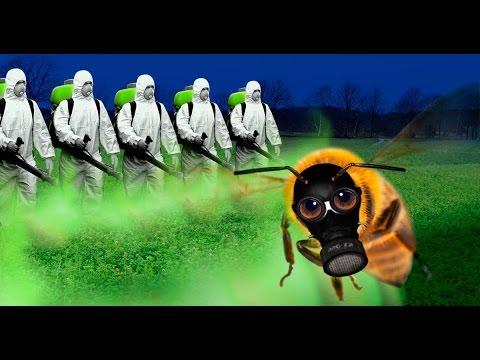 Bienensterben – Die Lügen der Chemiekonzerne