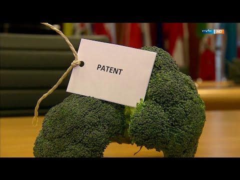 Gentechnik – Patente auf Lebensmittel 21.04.2015 – Bananenrepublik