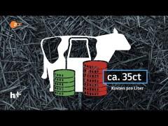 Fallende Milchpreise – Landwirte bei Groß-Demo in München – heuteplus 01.09.2015 – Bananenrepublik