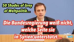 """50 Shades of Grey: Die Bundesregierung weiß nicht, wer """"die Guten"""" in Syrien sind"""