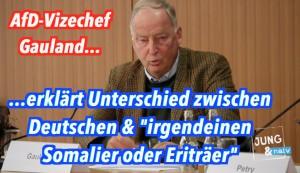 """AfD-Vize Gauland über Unterschied zwischen Deutsche & """"irgendwelche Eriträer"""""""