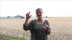 Degrowth – Was steckt hinter der Idee?