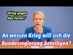 """Die Bundesregierung will Krieg führen. """"Gegen den Terror""""."""