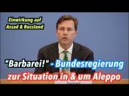 """""""Das ist Barbarei"""": Bundesregierung zur Situation in und um Aleppo"""