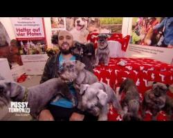 Niedliche Tiere & Abdelkarim – PussyTerror TV