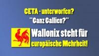 Wallonix steht für europäische Mehrheit