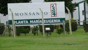 Tödliche Agri Kultur | Wie Monsanto die Welt vergiftet