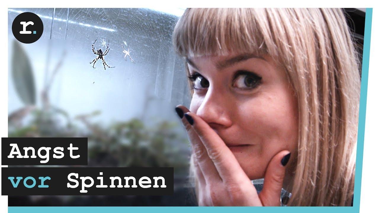 Spinnen - wie ich meine Phobie bekämpfe | VideoGold.de