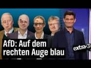 Die AfD zerfleischt sich selbst | extra 3 | NDR
