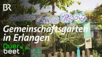 Gemeinschaftsgarten Erlangen