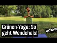 Yoga für Grüne | extra 3 | NDR