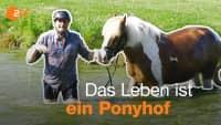 Arbeiten auf dem Reiterhof | Ferienjob-Tour mit Lutz und Fabian