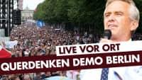 Querdenken-Demo: Berlin Invites Europe | 29.08.2020 #Corona #Coronademo
